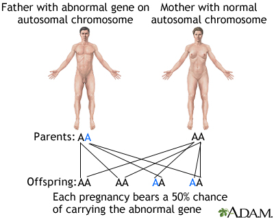 Autosomal dominant genes
