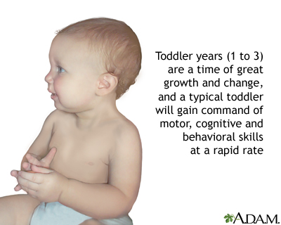 Toddler development
