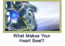 makesheartbeat